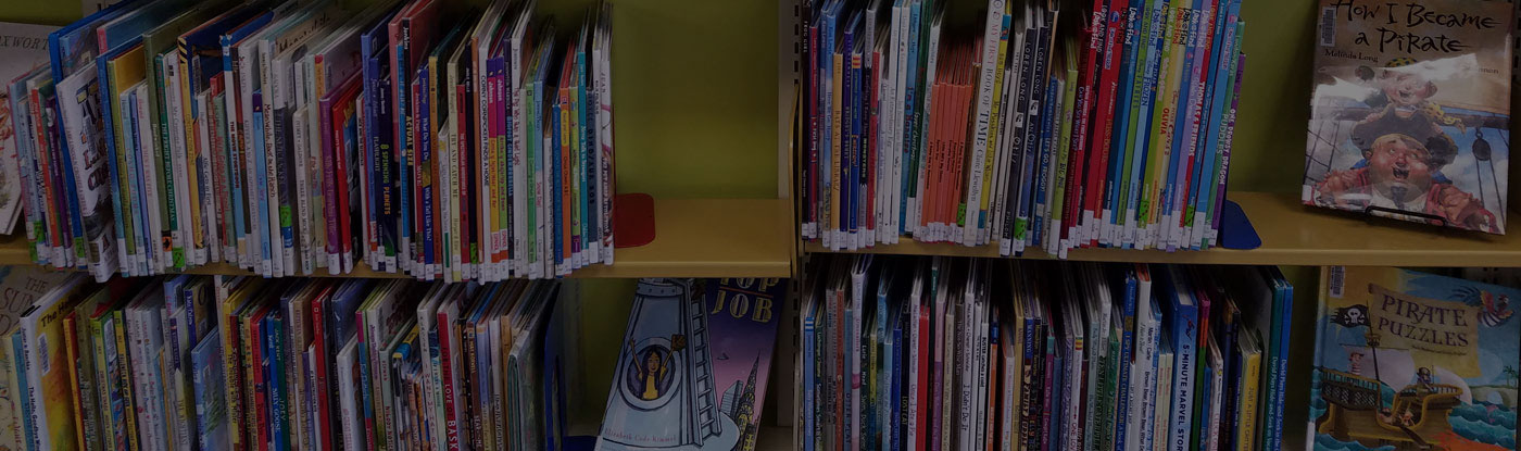 Photo of library books on a shelf
